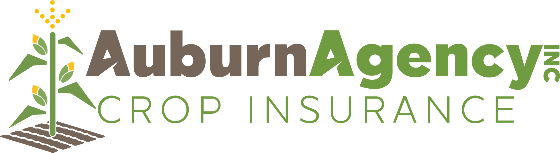 Auburn Agency Crop Insurance